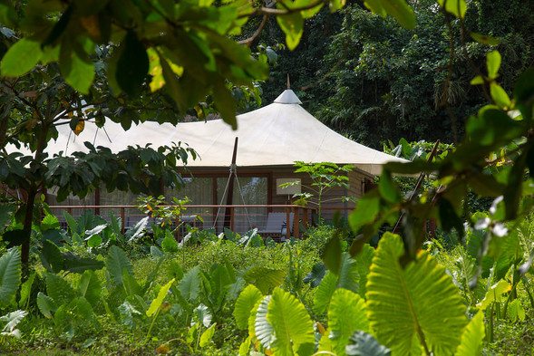 Luxury Tented Villa in Rainforest Sundy Praia
