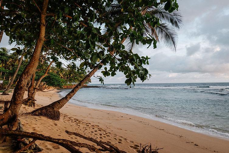Beach South São Tomé