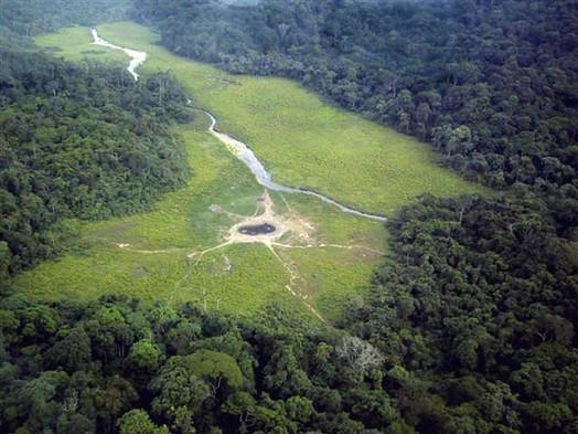 Langoué Bai Ivindo Gabon