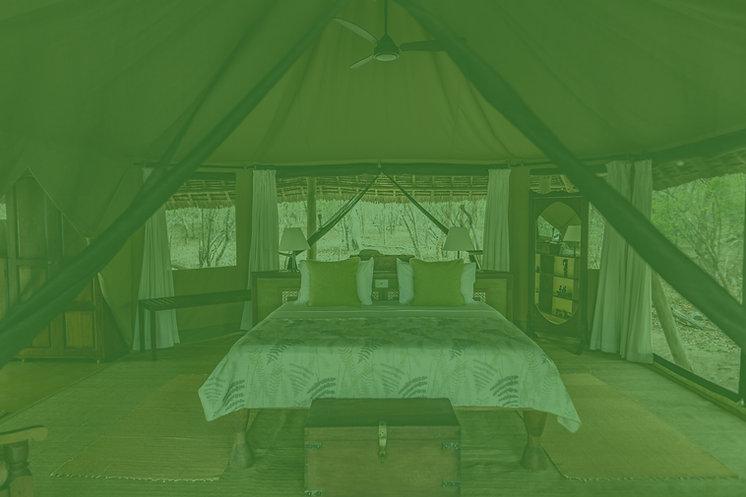 Siwandu%20Camp%20-%20bedroom_edited.jpg