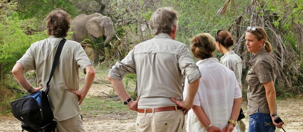 Siwandu Walking Safari Nyerere Tanzania