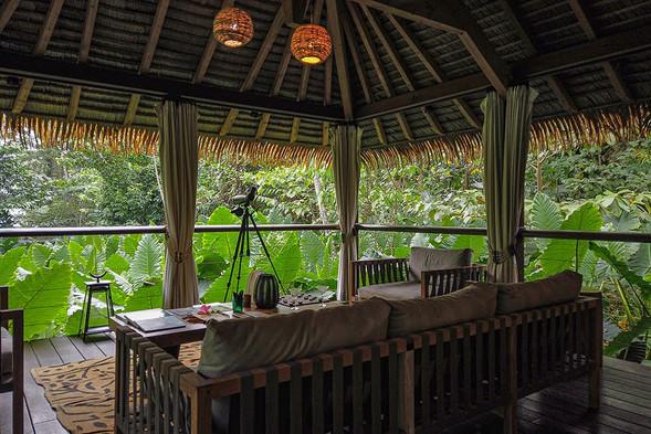 Tropical Rainfoest View Sundy Praia