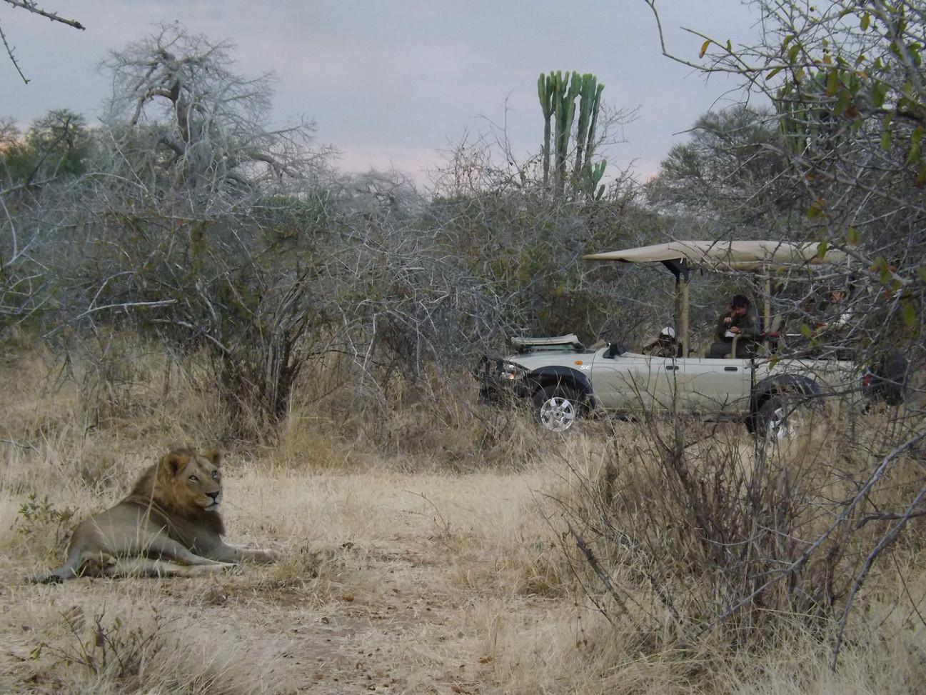 4x4 Safari Ruaha Jongomero Tanzania