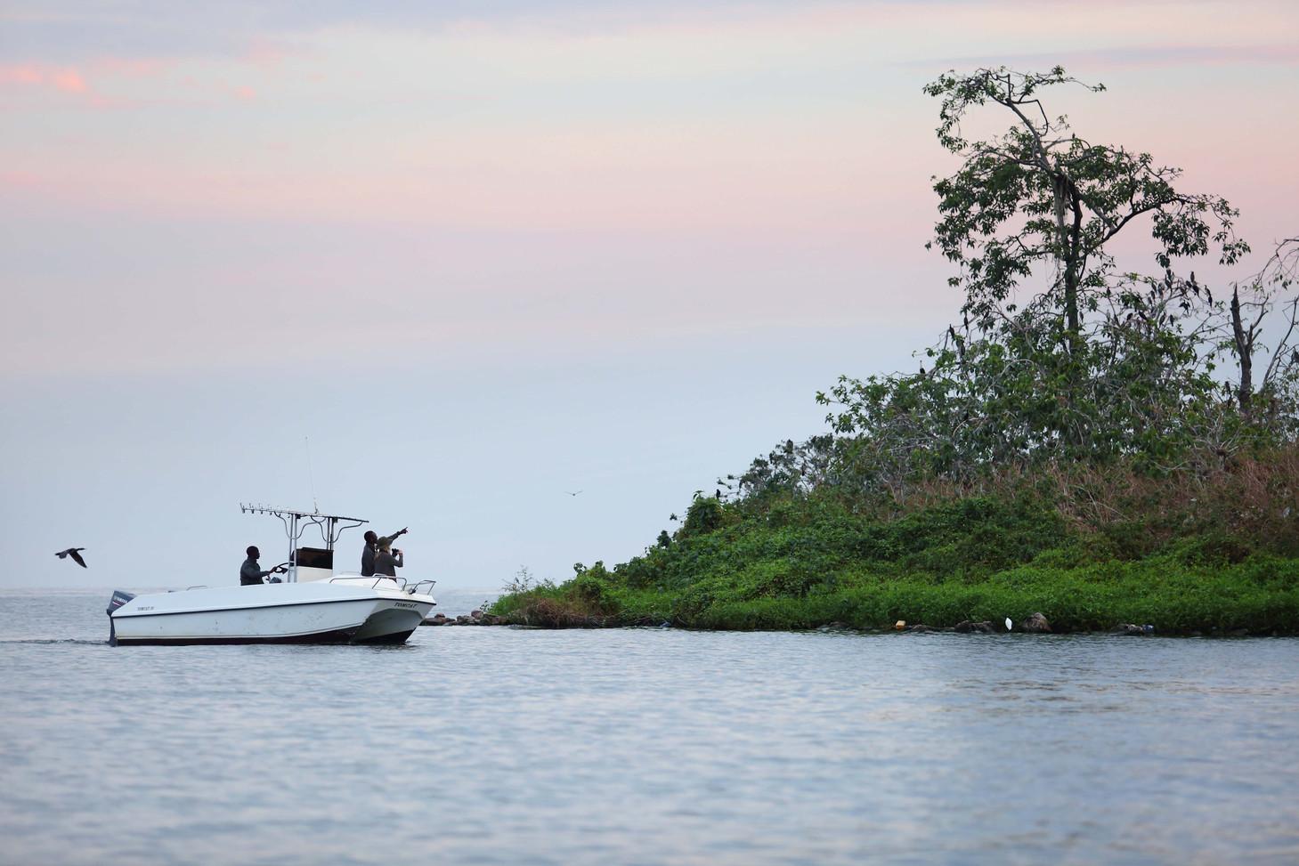 Bird Spotting Rubondo Island Tanzania