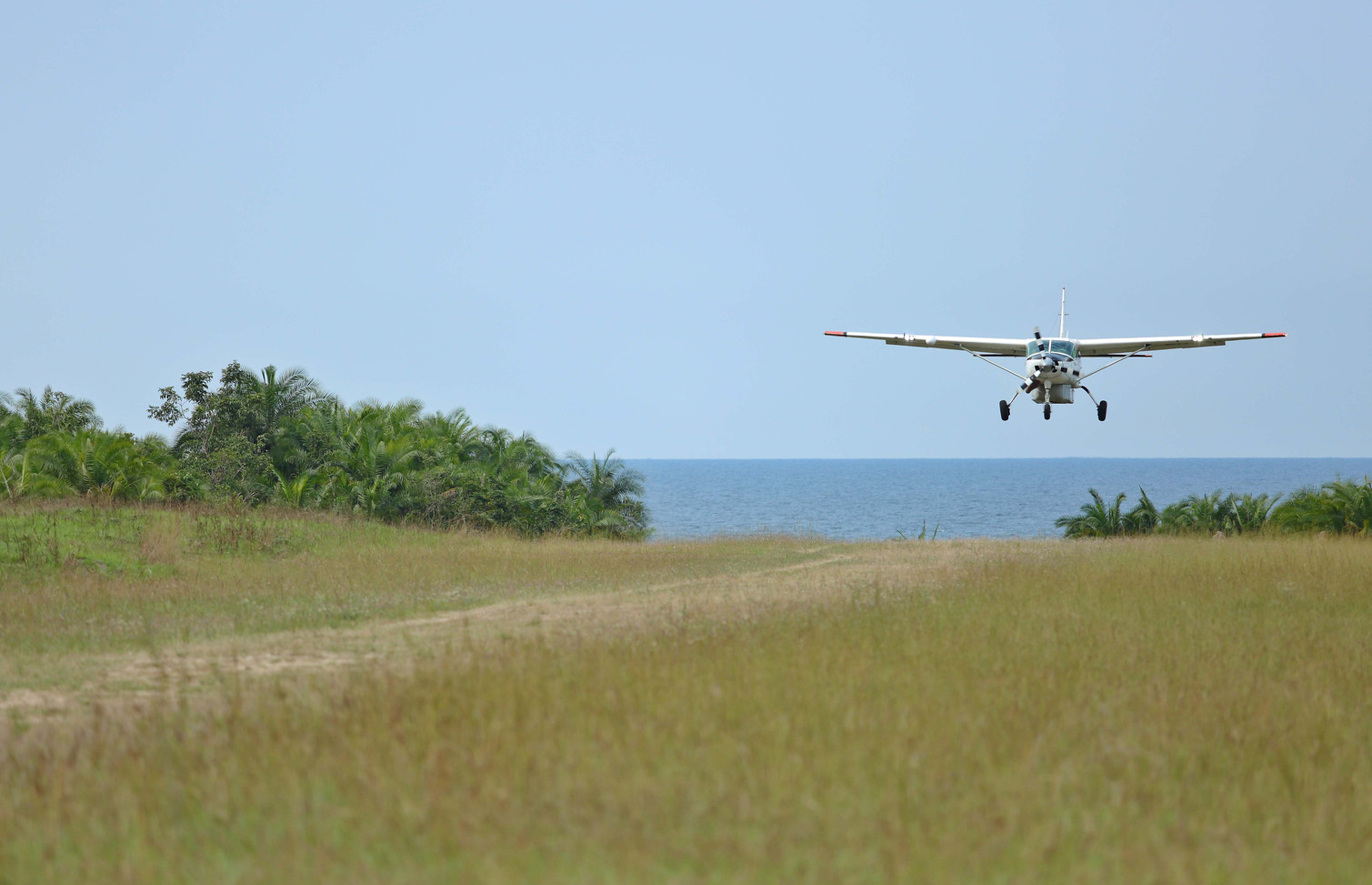 Arrivals at Airstrip on Rubondo Island T