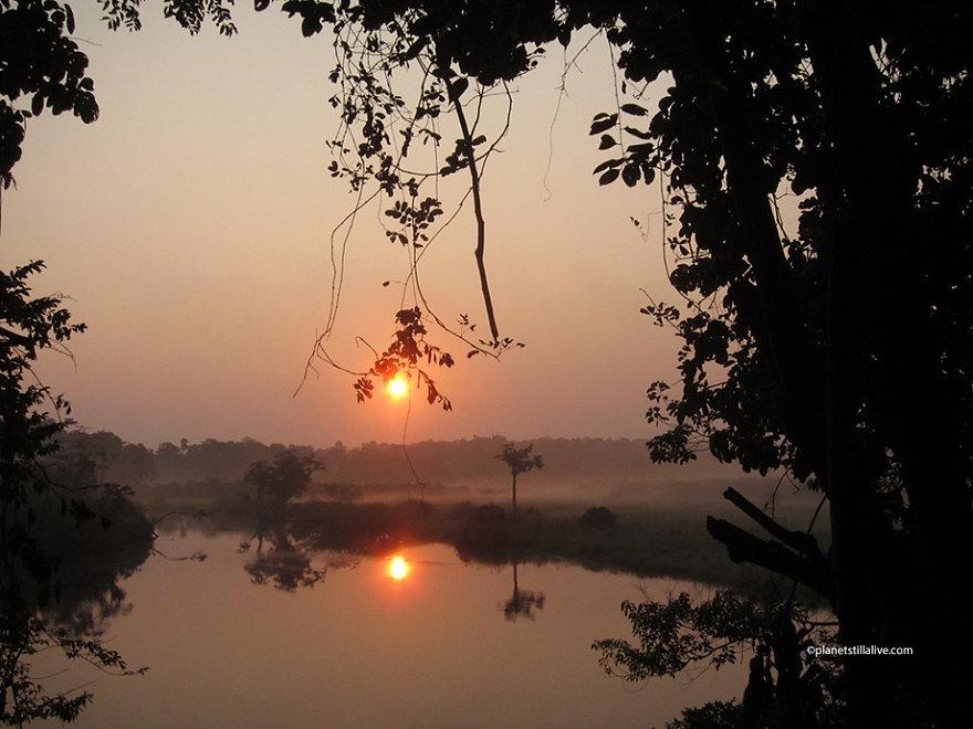Sunrise Akaka Loango Gabon.JPG