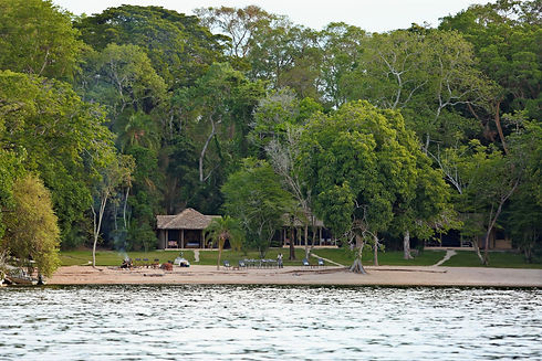 Rubondo Island Chimpanzee Camp Tanzania