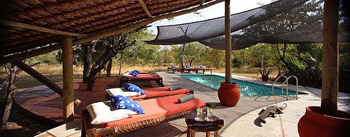 Swimming Pool Shaded Siwandu Nyerere Selous Tanzania