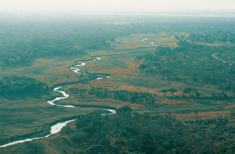 Chada Katavi National Park Tanzania