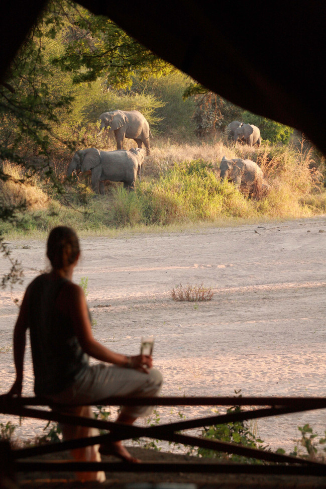 Elephants and sundowners at Jongomero, Ruaha