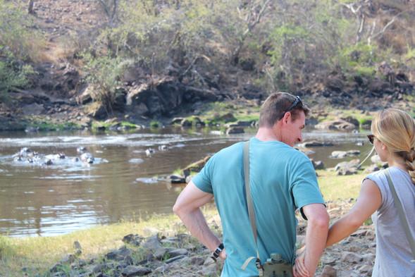 Morning Game Walk Jongomero Ruaha Tanzania