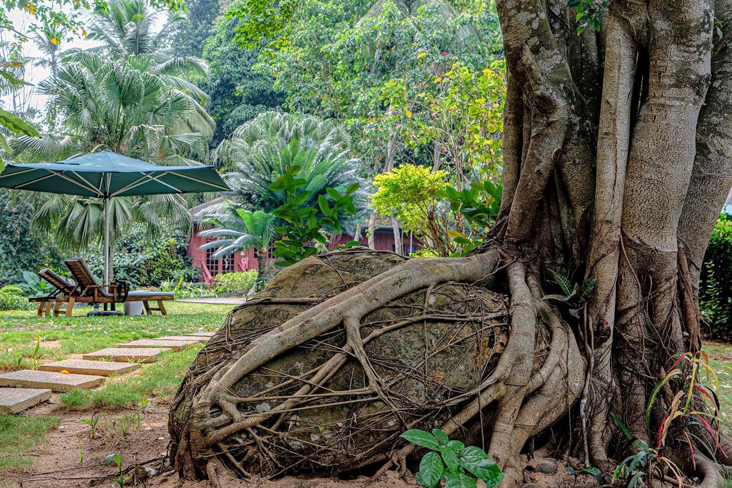 BomBom Tropical Beach Lodges Príncipe