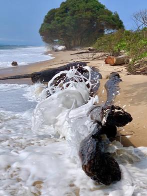 Beach Waves Pongara Lodge Gabon