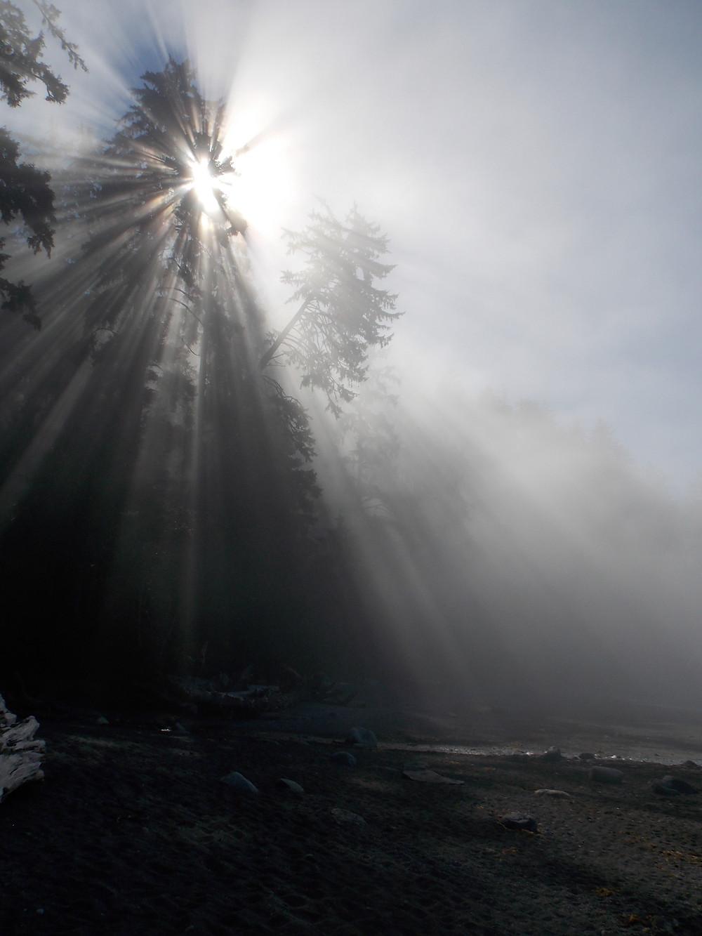 God's glory light shining on Sombrio Beach Juan De Fuca