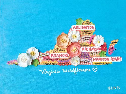 Virginia Wildflowers