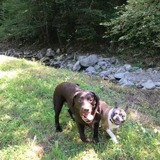 Petra e Pablo al fiume