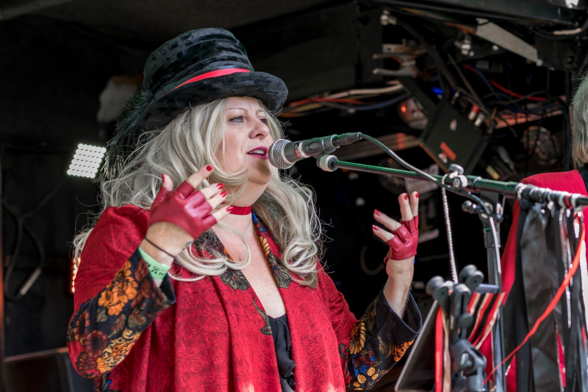 Paula as Stevie Nicks