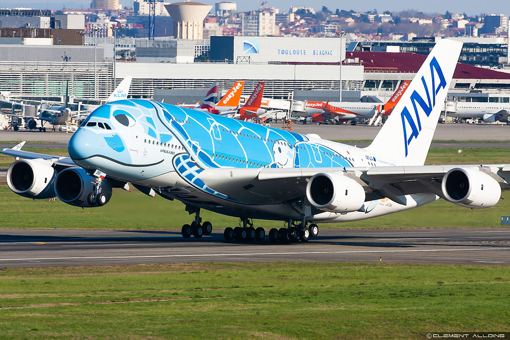 ANA A380 Lani Flying Honu in Toulouse - Gate7 - Clément Alloing