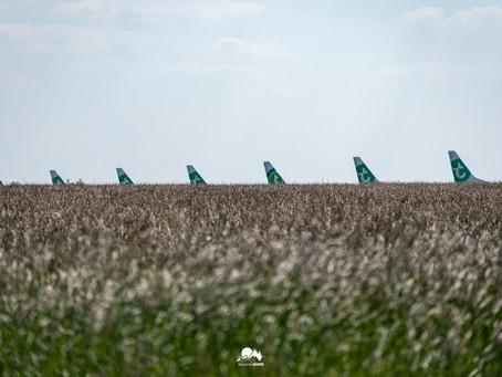 Les avions de Transavia au vert en attendant le 26 juin.