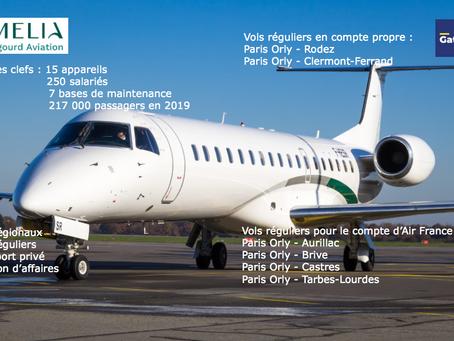 Amelia : la compagnie qui s'installe dans le paysage aérien français.