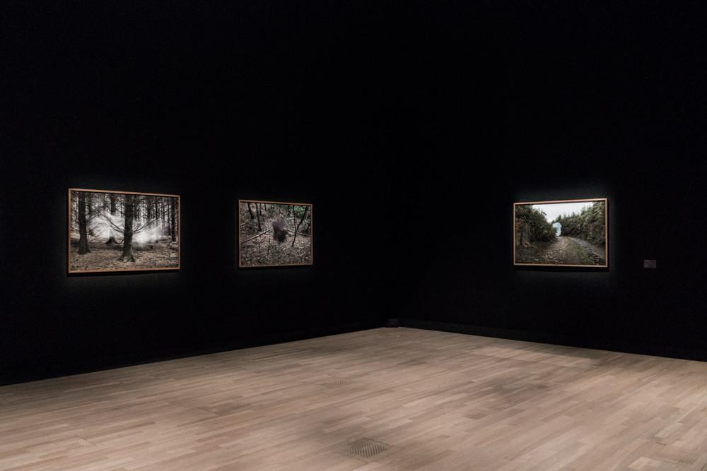 Post Tenebras Lux, exhibition view, Artist File 2015 Next Doors, National Art Center, Tokyo Japan 2015