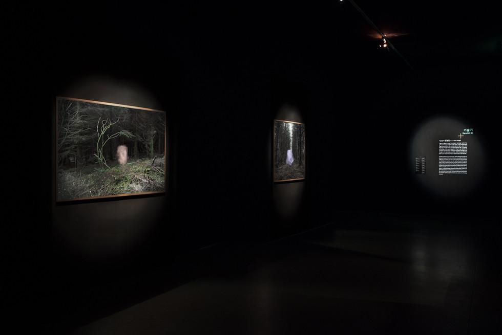 Post Tenebras Lux, exhibition view The Breath of Fresh  Gyeonggi Museum of Modern Art, Ansan, Korea 2014