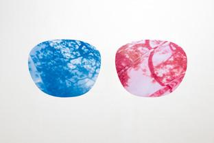 Glasses Archival pigment print 50.8x41cm(each) Photography 2019