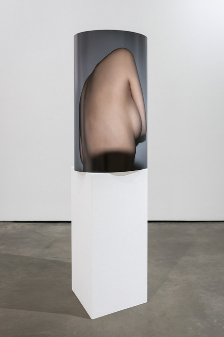 Torso (Installation view).jpg