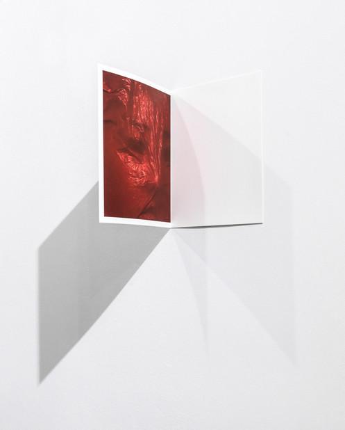 Portrait, installation, view Archival pigment print I : 19.2x24cm  P: 40.4x26cm 2018