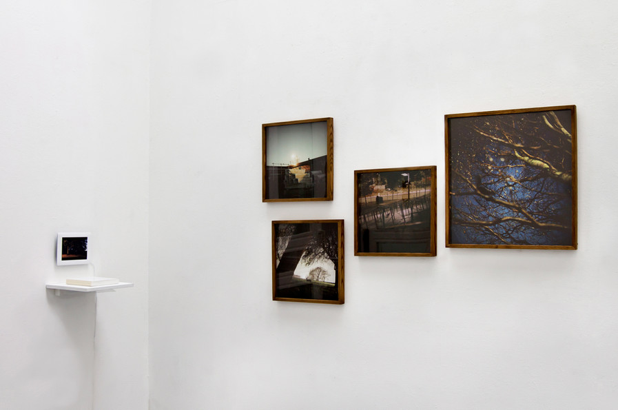 Imputed Scenery, exhibition view