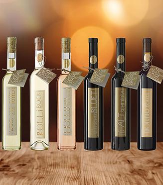 Johanneli Fi Weinkeller, Schweizer Weintourismuspreis, Heida, Höchster Weinberg Europas, Weindegustation, Preise, Dauer, Wein, Essen