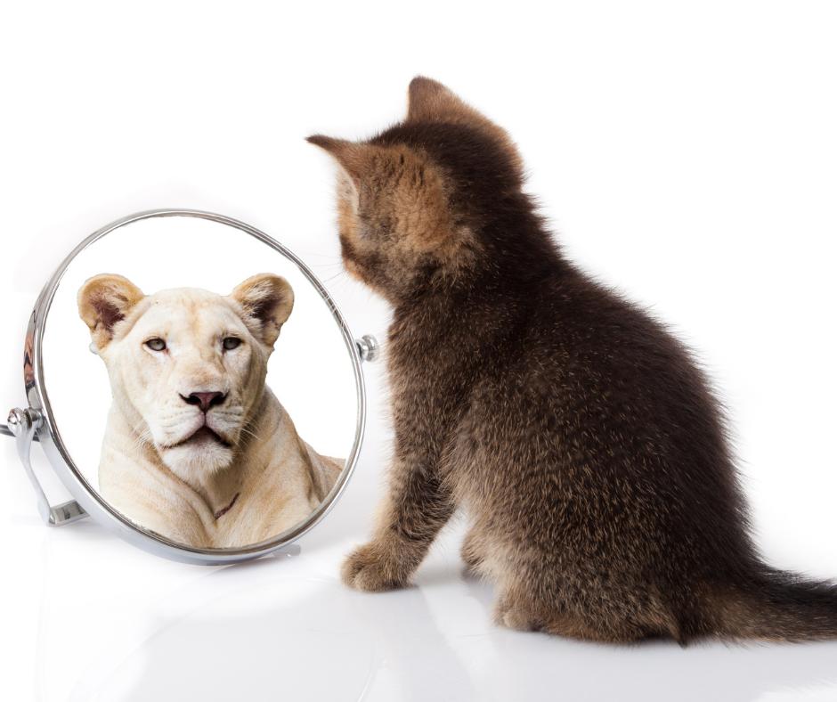 Build Self-Trust for a Success Mindset