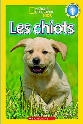 National Geographic Kids : Les chiots (niveau 1)