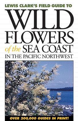 Wild Flowers of the Sea Coast
