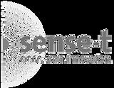 sense-t logo transparent greyscale.png