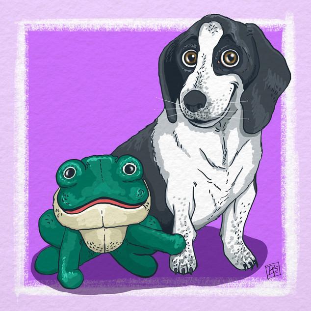 Bassett Hound and Frog.jpg