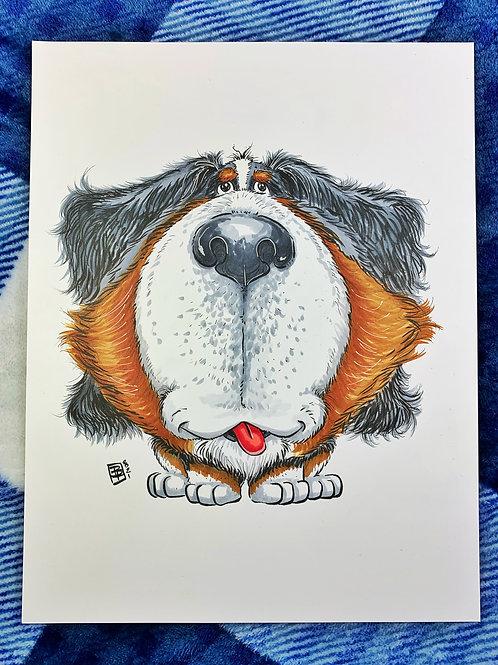 Bernese Mountain Dog - The Goodest Pups