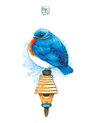 Adorable-Bluebird-Art