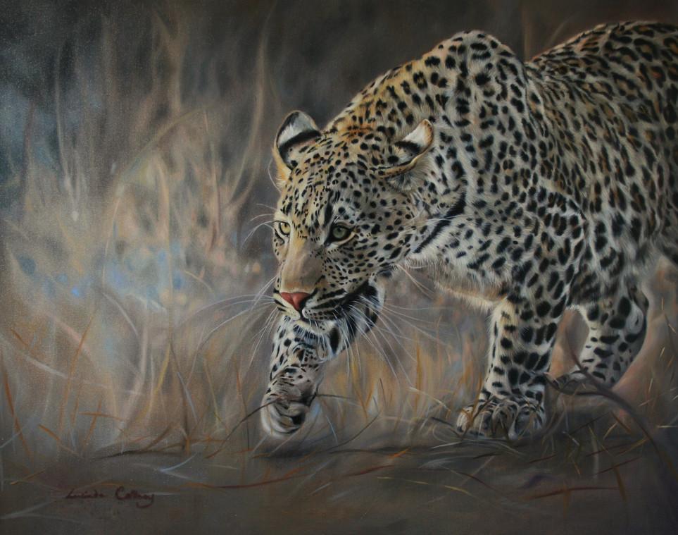 Velvet Tread. Londolozi Leopard. SOLD