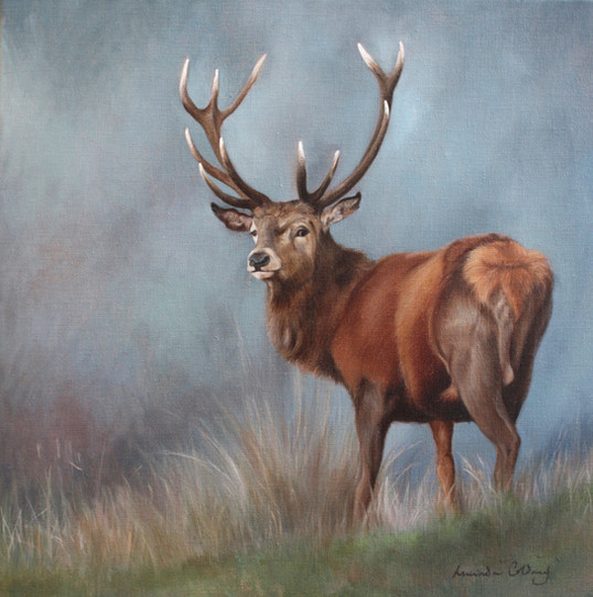 Highland Beauty - Oil on canvas. SOLD