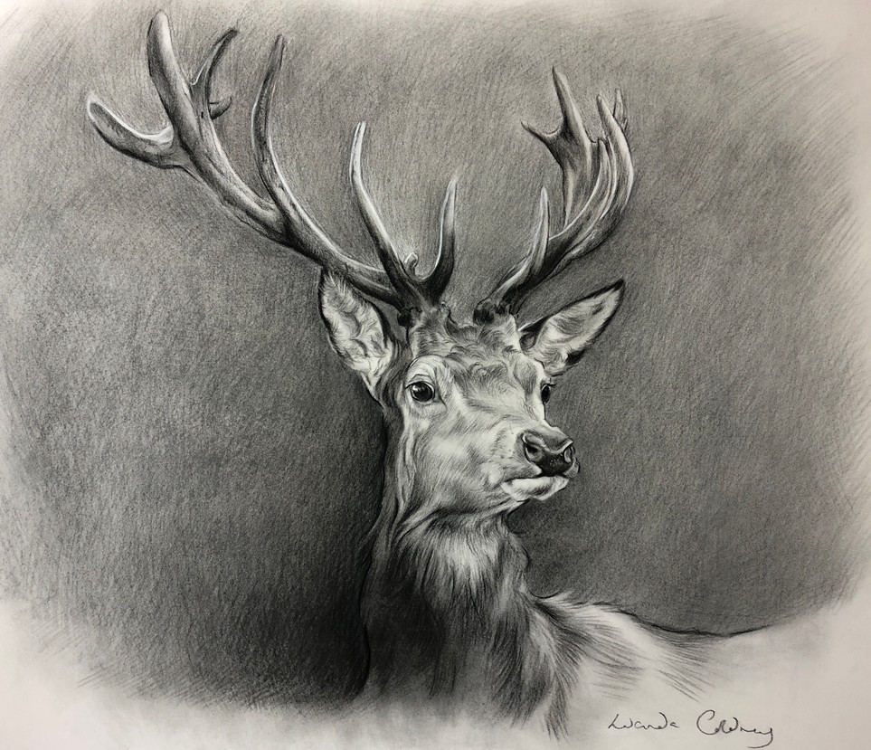 Majesty, Mixed media on paper. £875.00