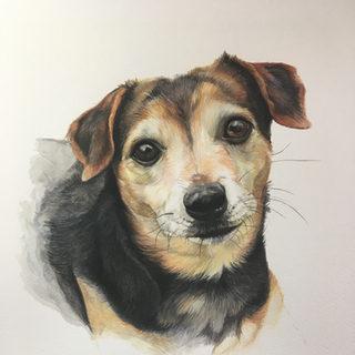 Chloe - Watercolour on paper