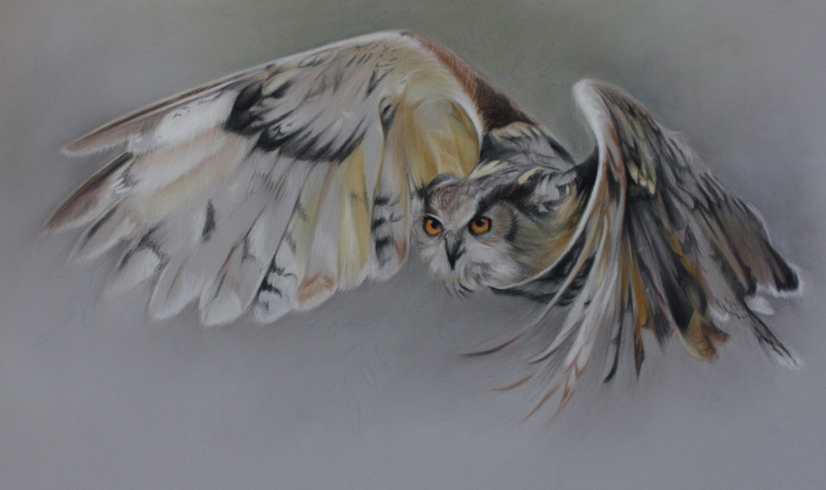 Hunter - pastel on paper