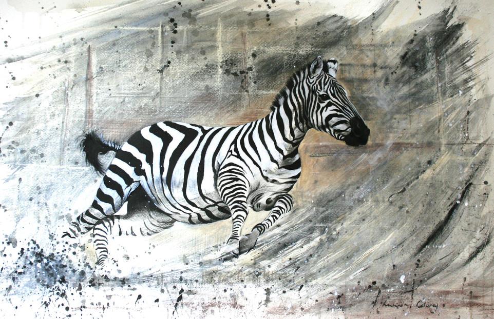 Dancing Dust - zebra. SOLD