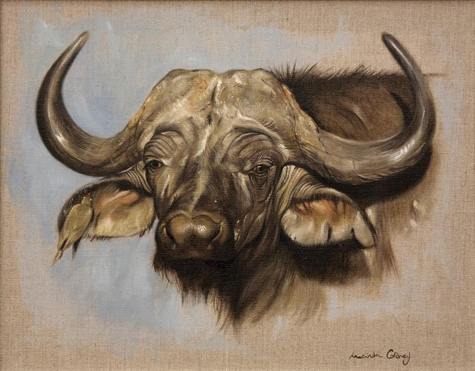 Gossip - Buffalo and Ox pecker. £550.00