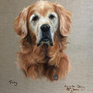 timmy - oil on canvas