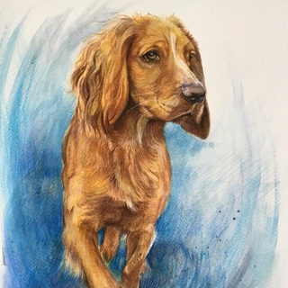 marnie - watercolour on paper