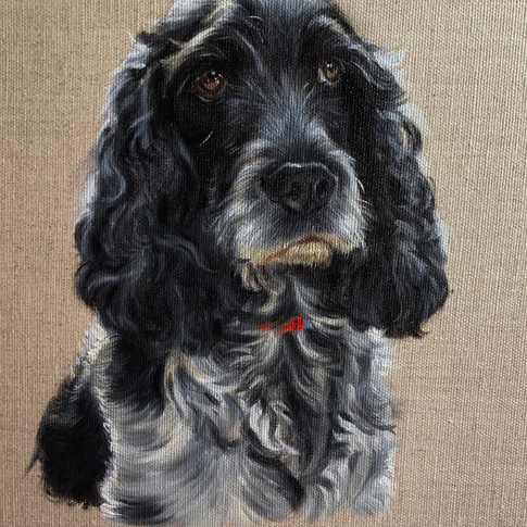 Rosie - nearly finished... a few more tw