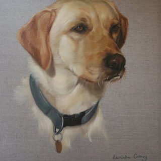 Tilly - oil on canvas.