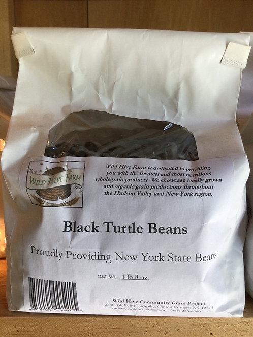 Beans, Black Turtle - Wild Hive Farm